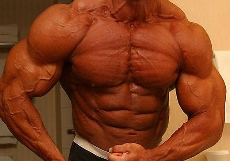 Die Effektivität anaboler Steroide beim Aufbau unterschiedlicher Muskelgruppen